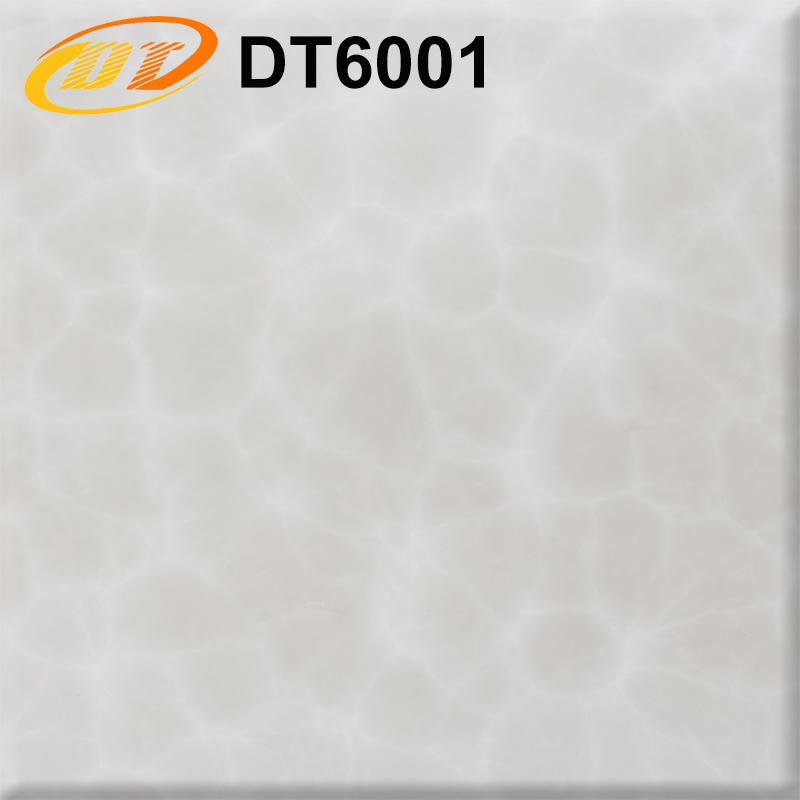 DT6001