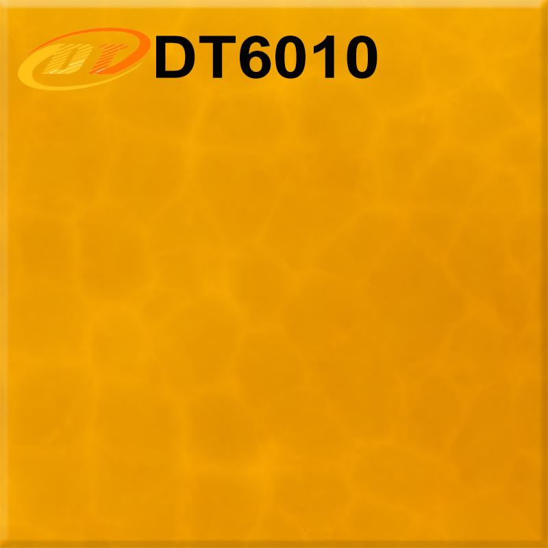 DT6010