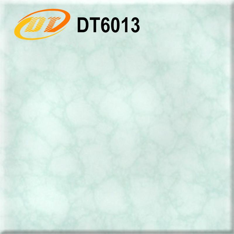 DT6013