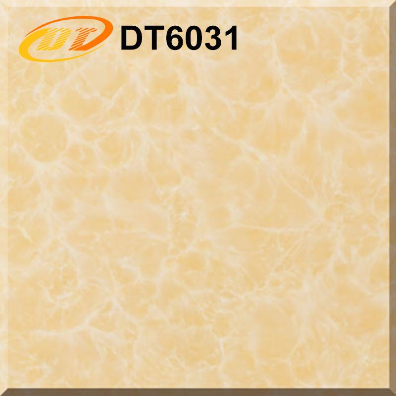DT6031
