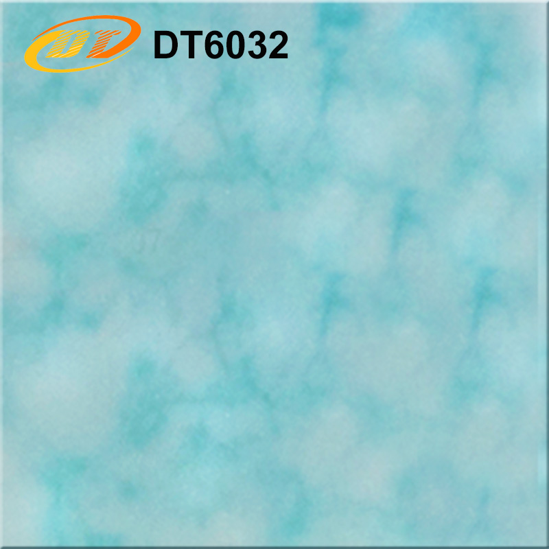DT6032