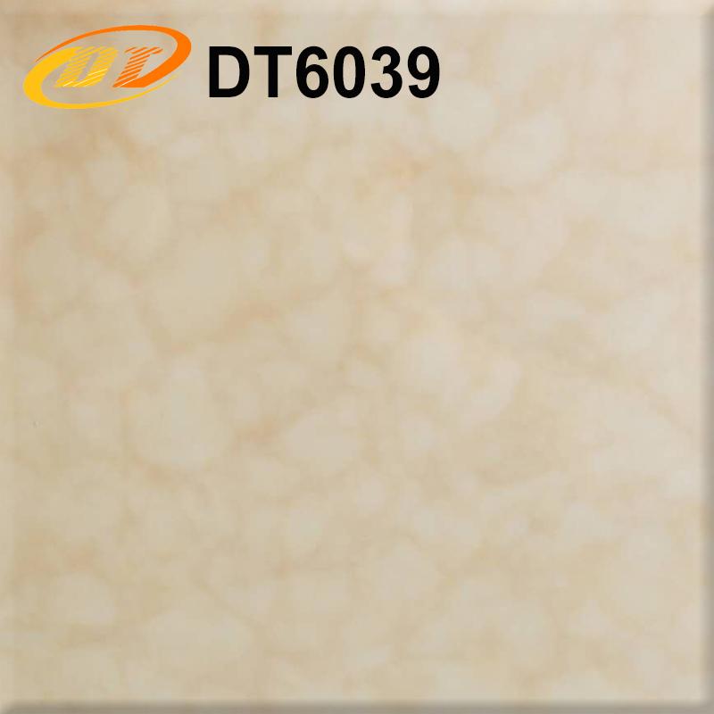 DT6039