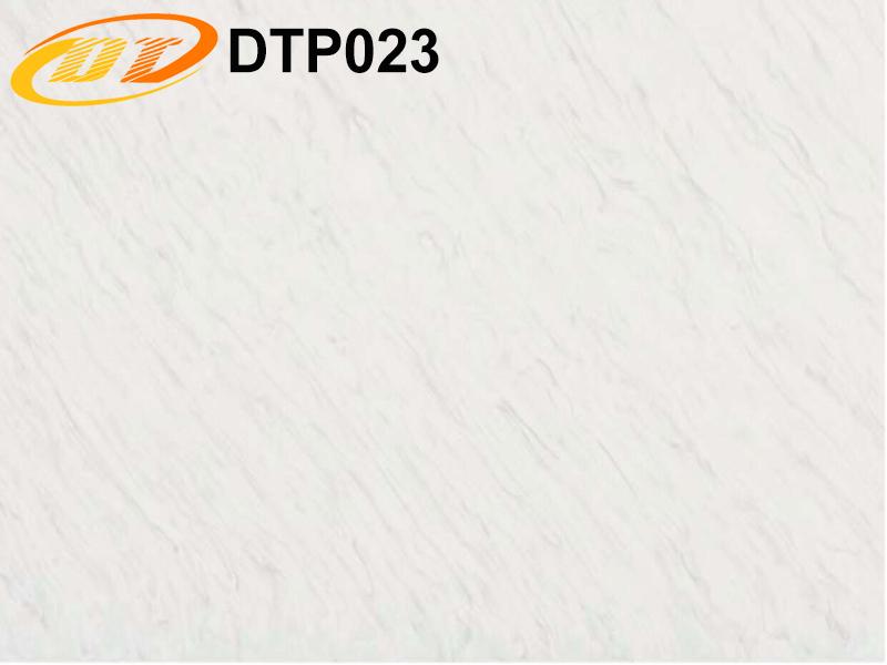DTP023