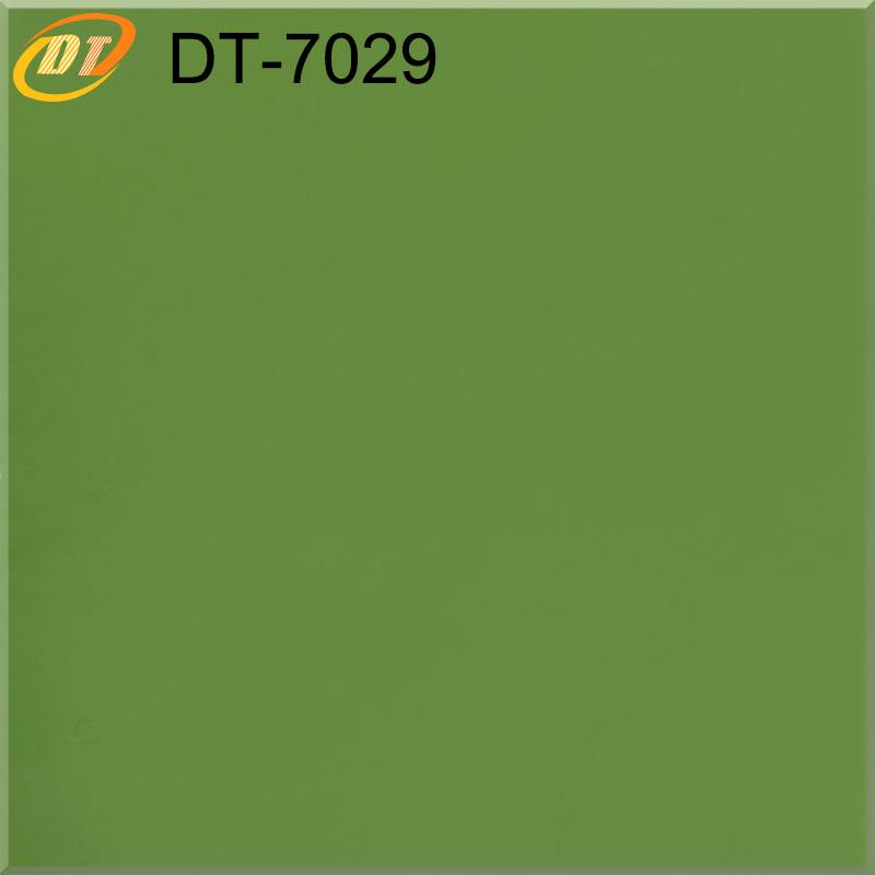 DT7029