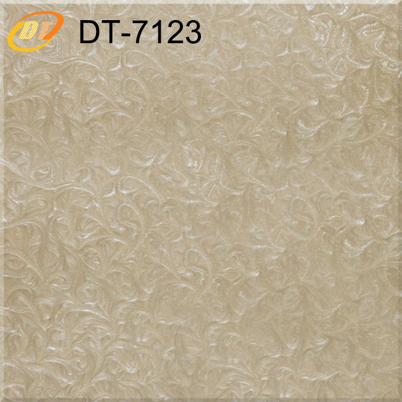 DT7123