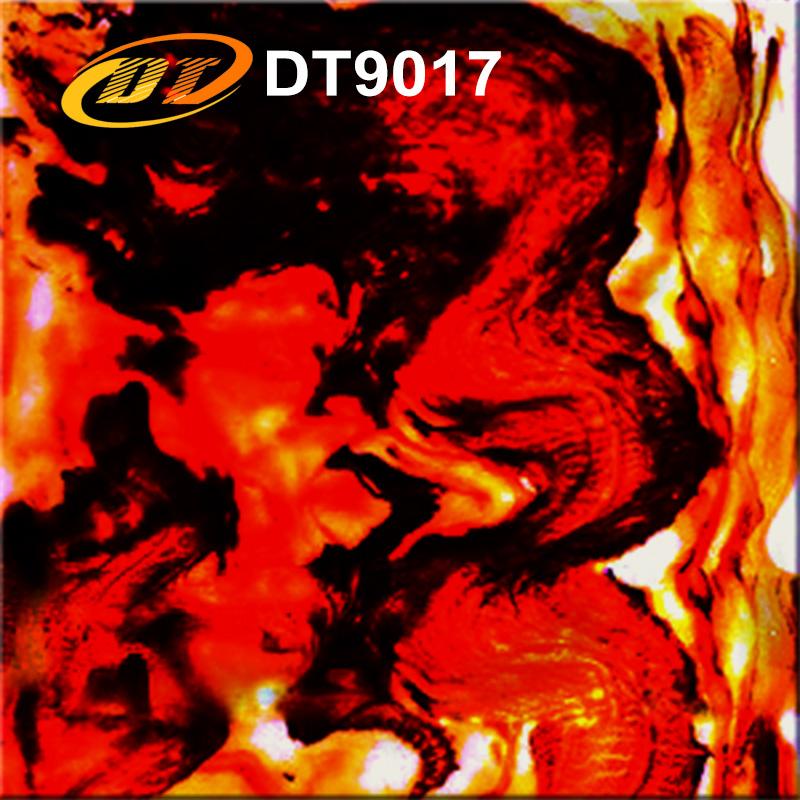 DT9017