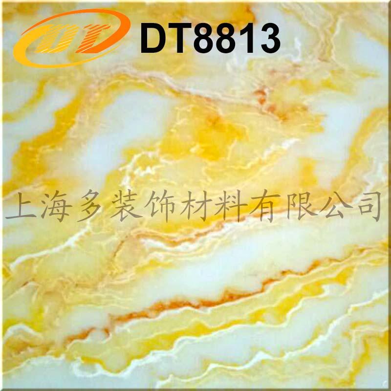 DT8813